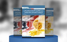 گزارش صنعتی بررسی نانوکامپوزیتهای پلیمری بر پایه پلیاتیلن و پلیپروپیلن در زنجیره ارزش صنعت پتروشیمی