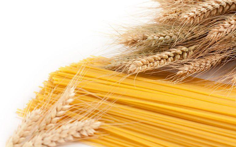 نشست صنعتی توانمندیهای فناوری نانو برای صنایع آردسازی و ماکارونی کشور